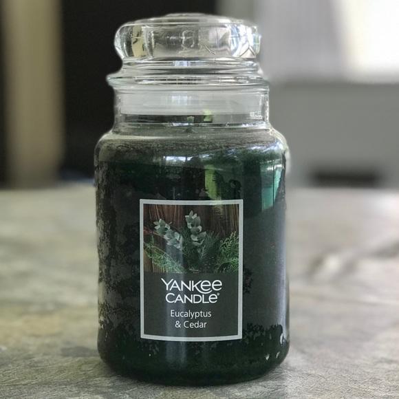 Yankee Candle Eucalyptus & Cedar 22oz Jar, New